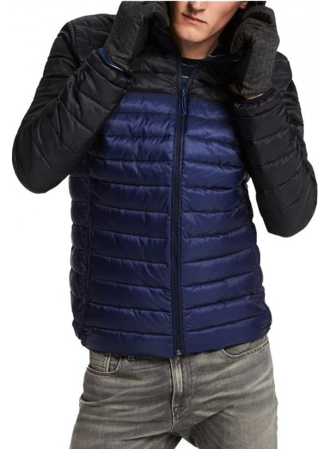 SCOTCH AND SODA Quilted Hooded Jacket Blue/black
